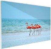Roze flamingos in het water  Glas 90x60 cm - Foto print op Glas (Plexiglas wanddecoratie)