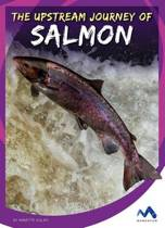 The Upstream Journey of Salmon