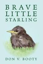 Brave Little Starling