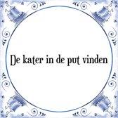 Tegeltje met Spreuk (Tegeltjeswijsheid): De kater in de put vinden + Kado verpakking & Plakhanger
