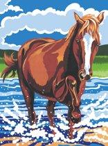 Schilderen op nummer - pony