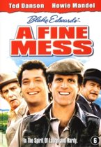 A Fine Mess (dvd)