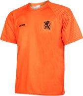 Nederlands Elftal Voetbalshirt Thuis Blanco 2018-2020