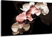 Canvas schilderij Orchidee | Bruin, Zwart, Grijs | 140x90cm 1Luik