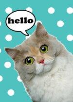 Kaart Poes - Kaart Kat - Kaarten Katten - Kaartensetje Poezen