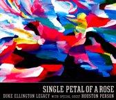 Single Petal of a Rose