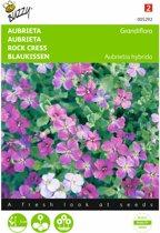 Aubrietia hybrida (gemengde kleuren) - set van 7 stuks