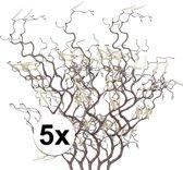 5x Bruine kronkelhazelaar paastak 66 cm - Paastakken