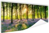 Kleurrijke bloemen in het bos Poster 90x60 cm - Foto print op Poster (wanddecoratie woonkamer / slaapkamer)