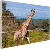 FotoCadeau.nl - Giraffe in de natuur Hout 60x40 cm - Foto print op Hout (Wanddecoratie)