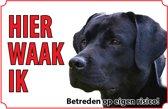 Bord - Hond Labrador