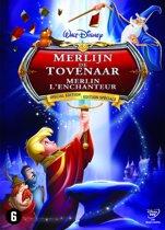 Merlijn De Tovenaar (S.E.)