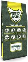 Yourdog leeuwhondje senior hondenvoer 12 kg