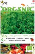 3 stuks Organic Koriander (Skal 14725)
