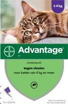 Advantage 80 Tegen Vlooien - >4kg - 4 x 0,8ml - Adult
