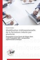 Mod�lisation Tridimensionnelle de la Fermeture Induite Par Plasticit�