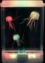 Glow in the dark' kwallen aquarium (snoezelen)