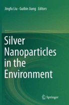 Silver Nanoparticles in the Environment