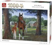 Generic 1000 Horses