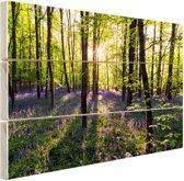 Paarse bloemen in het bos Hout 120x80 cm - Foto print op Hout (Wanddecoratie)