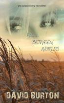 Wall Between Worlds