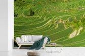 Fotobehang vinyl - Kleurrijke Rijstterrassen van Lóngjĭ in China breedte 420 cm x hoogte 280 cm - Foto print op behang (in 7 formaten beschikbaar)