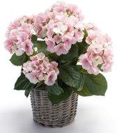 Kunstplant Hortensia roze in rieten mand 45 cm - Kamerplant roze Hortensia