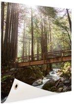 Amerikaans bos  Tuinposter 80x120 cm - Tuindoek / Buitencanvas / Schilderijen voor buiten (tuin decoratie)