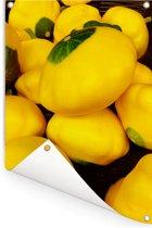 Grote en gele patissons op een donkere ondergrond Tuinposter 80x120 cm - Tuindoek / Buitencanvas / Schilderijen voor buiten (tuin decoratie)