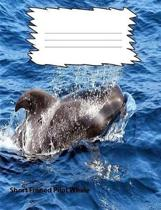 Short-Finned Pilot Whale College Ruled Line Paper Composition Book