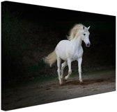Wit paard foto Canvas 120x80 cm - Foto print op Canvas schilderij (Wanddecoratie)