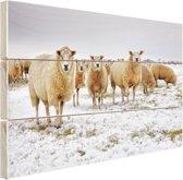 Schapen in een winterlandschap Hout 60x40 cm - Foto print op Hout (Wanddecoratie)