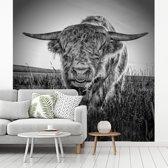 Zwart wit afbeelding van een Schotse hooglander fotobehang vinyl breedte 220 cm x hoogte 220 cm - Foto print op behang (in 7 formaten beschikbaar)