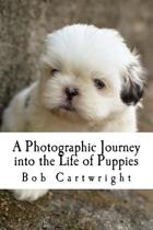A Photographic Journey Into the Life of Puppies