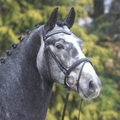 Waldhausen Hoofdstel X Line Elda maat pony