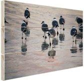 Meeuwen in het water Hout 160x120 cm - Foto print op Hout (Wanddecoratie) XXL / Groot formaat!