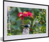 Foto in lijst - Timalia tussen de felgekleurde bloemen fotolijst zwart met witte passe-partout 60x40 cm - Poster in lijst (Wanddecoratie woonkamer / slaapkamer)
