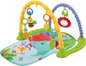 Fisher-Price Rainforest Friends - Activity Gym