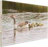FotoCadeau.nl - Gans met baby's Hout 120x80 cm - Foto print op Hout (Wanddecoratie)
