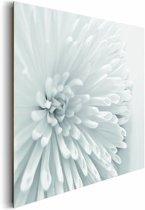 REINDERS Witte bloem - Schilderij - 90x60cm