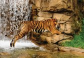 Fotobehang Tiger Waterfall Nature | XXL - 312cm x 219cm | 130g/m2 Vlies