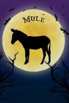Mule Notebook Halloween Journal