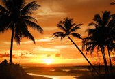 Fotobehang Beach Tropical Sunset Palms | XXXL - 416cm x 254cm | 130g/m2 Vlies