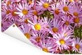 Aster bloemen in een tuin Tuinposter 60x40 cm - klein - Tuindoek / Buitencanvas / Schilderijen voor buiten (tuin decoratie)