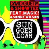 Sun Goes Down (LP)