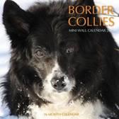Border Collies Calendar 2015