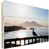 Postduif op een hek bij zonsondergang in Napels Vurenhout met planken 30x20 cm - klein - Foto print op Hout (Wanddecoratie)