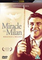 Miracle In Milan (dvd)