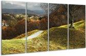 Glasschilderij Natuur   Groen, Bruin, Wit   160x80cm 4Luik   Foto print op Glas    F001650