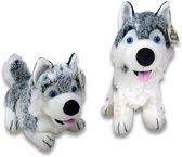 Husky knuffeldieren - Pluche - Grijs en wit - Set van 2 stuks